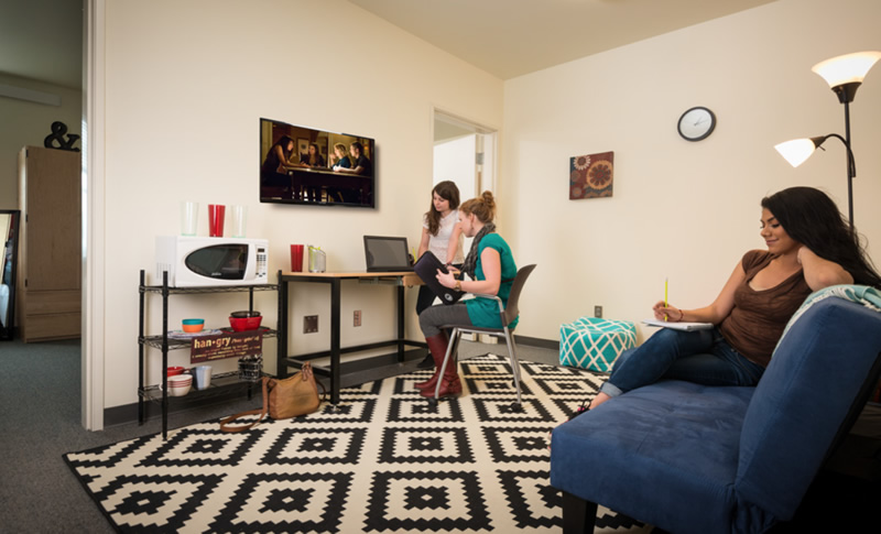 Residence Hall - Students studying in shared area